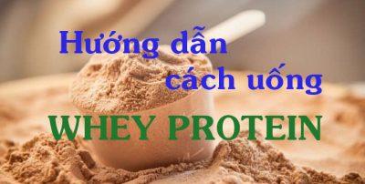 whey protein là gì